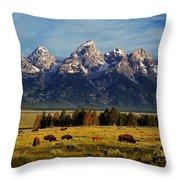 Buffalo Under Tetons 2 Throw Pillow