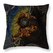 Buffalo Vision Throw Pillow