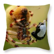 Buffet Throw Pillow