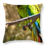 Buffon's Macaw Throw Pillow