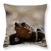 Bufo Bufo 2 Throw Pillow
