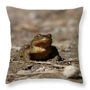 Bufo Bufo Throw Pillow
