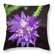 Bug Chilling Chive Throw Pillow