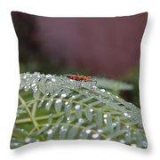 Bug Homestead Throw Pillow