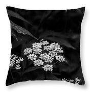 Bug On Flowers Black And White Throw Pillow
