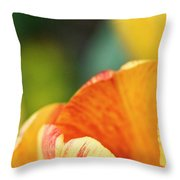 Bug View Of Tulip Throw Pillow