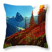 Bugaboos Evening Buzz Throw Pillow