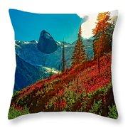 Bugaboos Evening Throw Pillow
