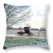 Buggy Alone In Winter Throw Pillow