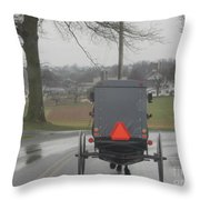 Buggy Ride After The Storm Throw Pillow