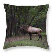 Bull Elk Bugle Throw Pillow