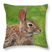 Bugs Bunny.. Throw Pillow