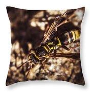 Bugs Life Throw Pillow