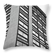 Building In Mexico Throw Pillow