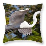 Building The Nest Throw Pillow