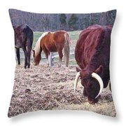 Bull And Horses, Mt. Vernon Throw Pillow