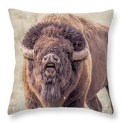 Bull Bison Throw Pillow