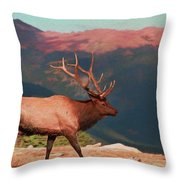 Bull Elk On Trail Ridge Road Throw Pillow