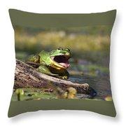 Bull Frog Throw Pillow