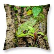Bull Frog On A Log Throw Pillow