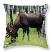 Bull Moose In The Woods  Throw Pillow