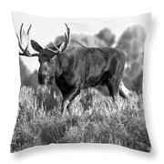 Bull On A Blue Sky Day Black And White Throw Pillow