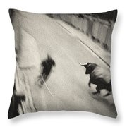 Bull Run 2 Throw Pillow