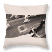 Bull Run 9 Throw Pillow