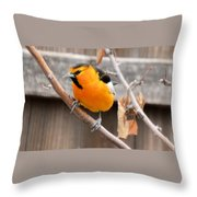 Bullock's Oriole Throw Pillow