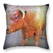 Bulls Eye Throw Pillow by Randall Weidner