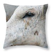 Bullseye2 Throw Pillow