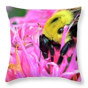Bumble Bee And Flower Throw Pillow