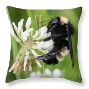 Bumble Bee By The Pond Throw Pillow