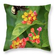 Bumble Bee In Flight Throw Pillow