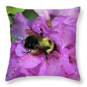 Bumble Bee On Rhododendron Blossoms Throw Pillow