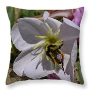 Bumble Bee On Wild Primrose 1 Throw Pillow