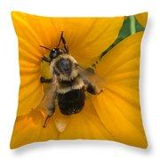 Bumble Bee On Yellow Nasturtium Throw Pillow