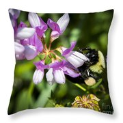 Bumble Bee Pollinating A Flower Throw Pillow