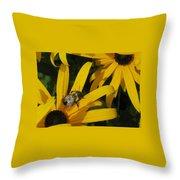 Bumble Bee Sitting On Black-eyed Susan Throw Pillow