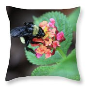 Bumble Bee Square Throw Pillow