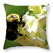 Bumble Bee Throw Pillow by Valeria Donaldson
