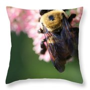 Bumble From Above Throw Pillow