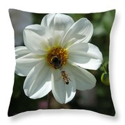 Bumblebee And Bee Throw Pillow