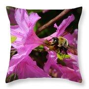 Bumblebee In Azalea Throw Pillow