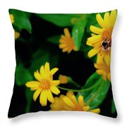 Bumblebee Throw Pillow