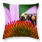Bumblebee On Coneflower Throw Pillow