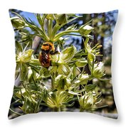 Bumblebee On Elkweed Blossoms Throw Pillow