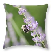 Bumblebee On The Lavender Field 2 Throw Pillow