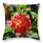 Bunch Of Tiny Flowers Throw Pillow