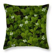 Bunchberry Carpet Throw Pillow